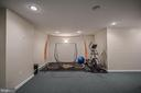 Exercise Area or Flex Space in Lower Level - 26124 TALAMORE DR, CHANTILLY