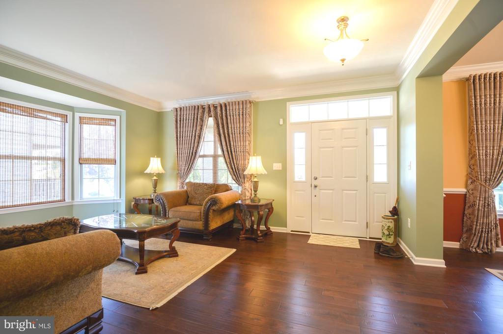 Living room and entry - 43217 BARNSTEAD DR, ASHBURN