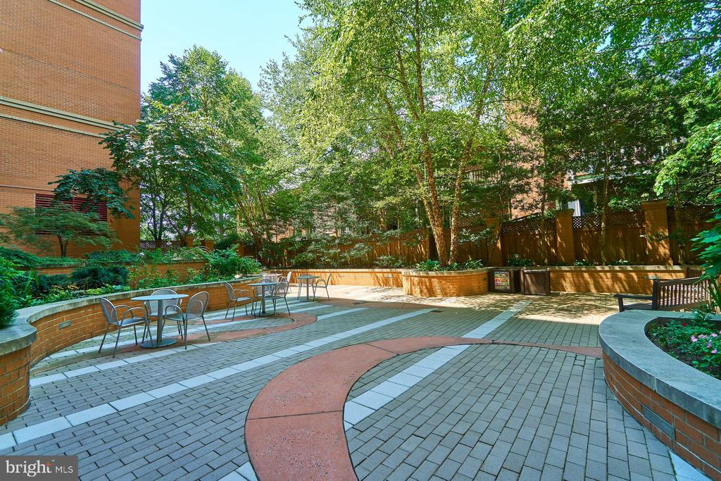 Courtyard Patio off of Community Lounge - 3625 10TH ST N #205, ARLINGTON