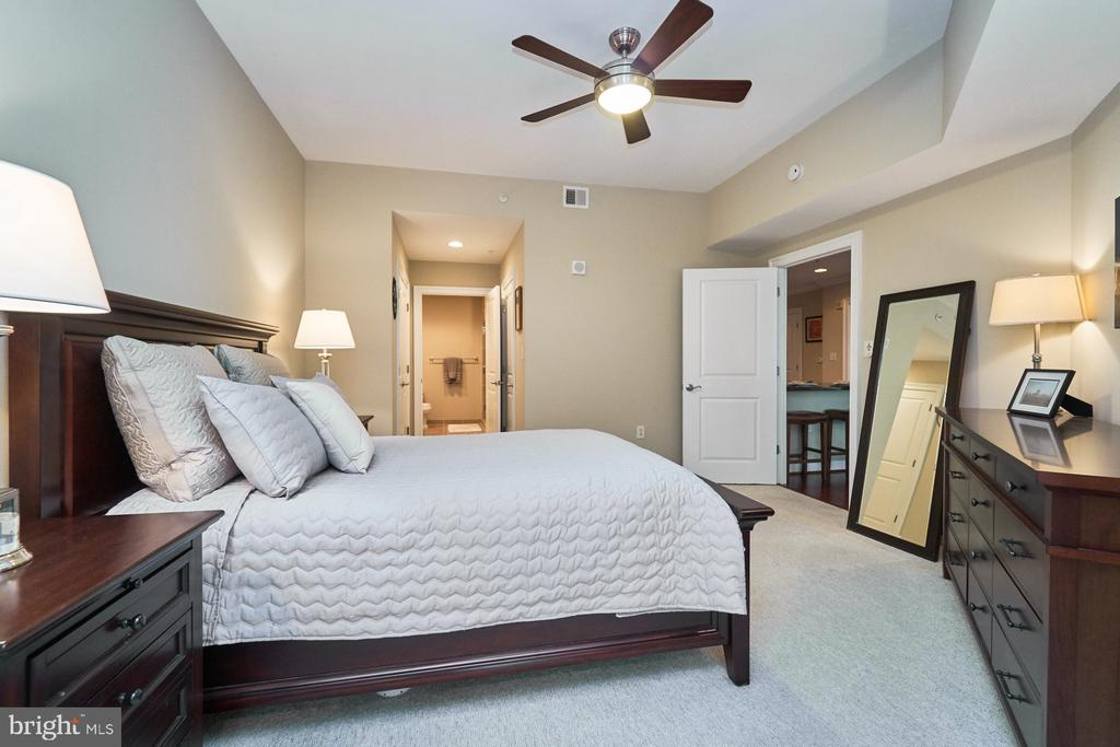 Master Bedroom - 3625 10TH ST N #205, ARLINGTON