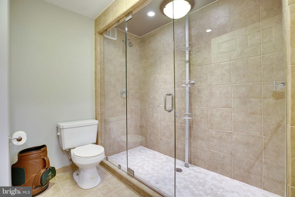 Lower level full bath w/ large walk-in shower - 26062 SARAZEN DR, CHANTILLY