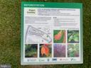 Glen Waye Gardens Reforestation Project - 2207 GREENERY LN #103-8, SILVER SPRING