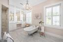 Exquisite master bath with working fireplace - 406 HANOVER ST, FREDERICKSBURG