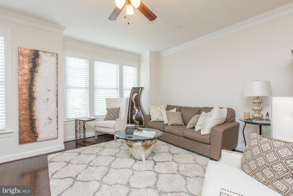 Living Room ML - 162 CONCORD PL NE, WASHINGTON