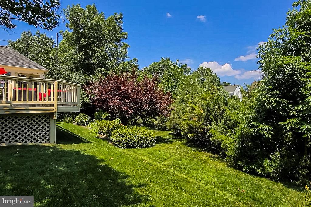 Landscaped Rear Yard - 26124 TALAMORE DR, CHANTILLY