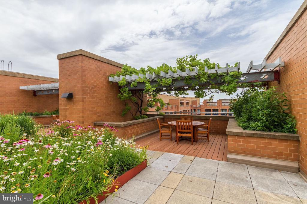 Welcome to the Clara Barton Rooftop! - 616 E ST NW #1201, WASHINGTON
