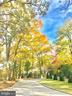 Colorful Fall Rendition of Entry Drive - 2920 SOUTHWATER POINT DR, ANNAPOLIS