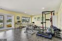 Expansive Lower Level Walk-out/  Exercise / Flex S - 2920 SOUTHWATER POINT DR, ANNAPOLIS