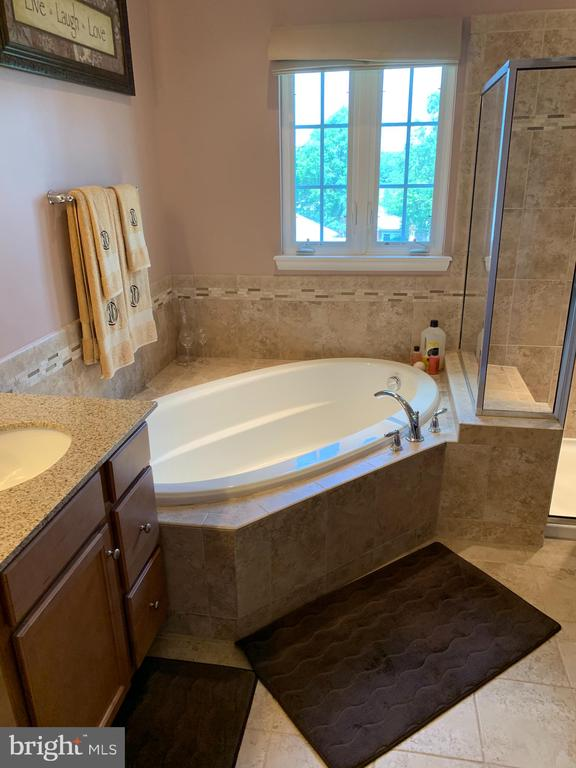 Large Master Bath with Soaking Tub & Shower - 14254 HARO TRL, GAINESVILLE