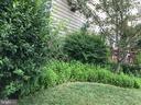 Back yard - 11079 SANANDREW DR, NEW MARKET