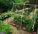 Vegetable garden - 2500 CHILDS LN, ALEXANDRIA