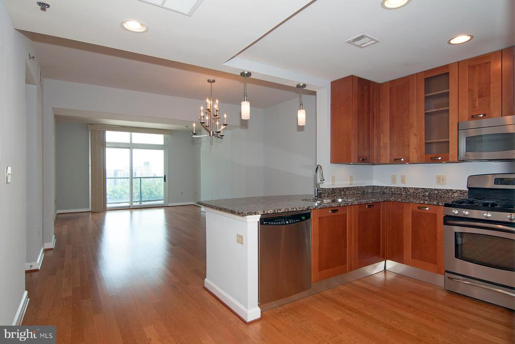 Open living space - 5750 BOU AVE #1508, NORTH BETHESDA