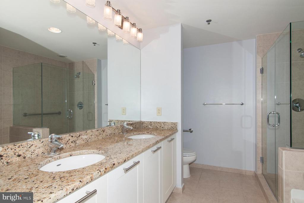 Master bath with grab bars and  granite counters - 5750 BOU AVE #1508, NORTH BETHESDA