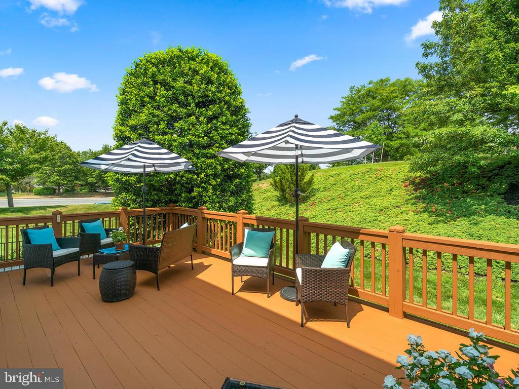 The Pool, +Tennis Cts are just beyond the Trees:) - 43820 LAUREL RIDGE DR, ASHBURN