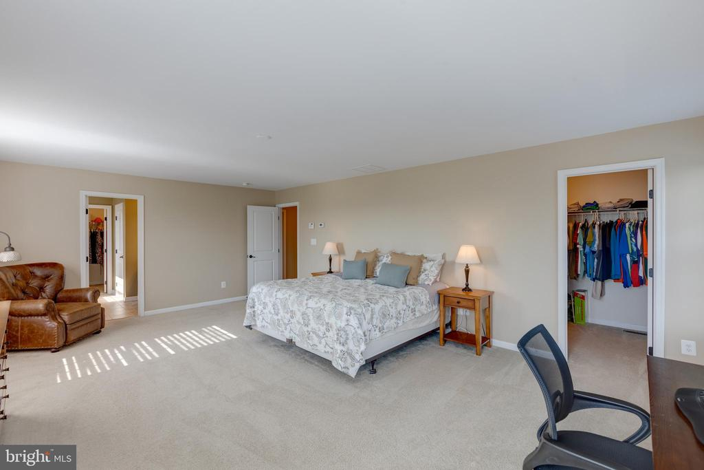 Master Bedroom - 25821 RACING SUN DR, ALDIE