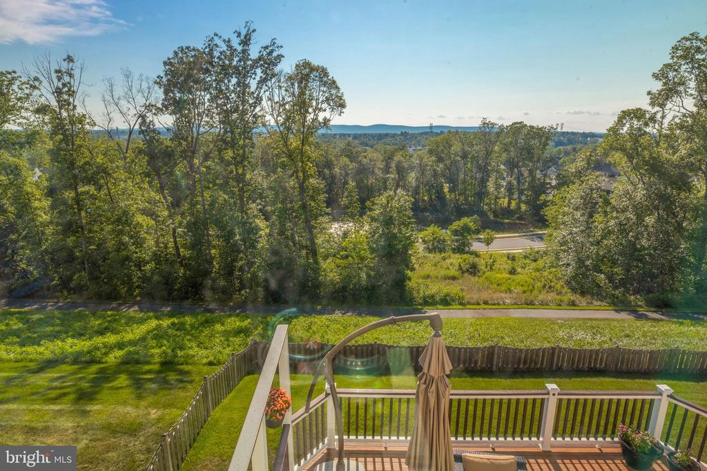 View! - 25821 RACING SUN DR, ALDIE