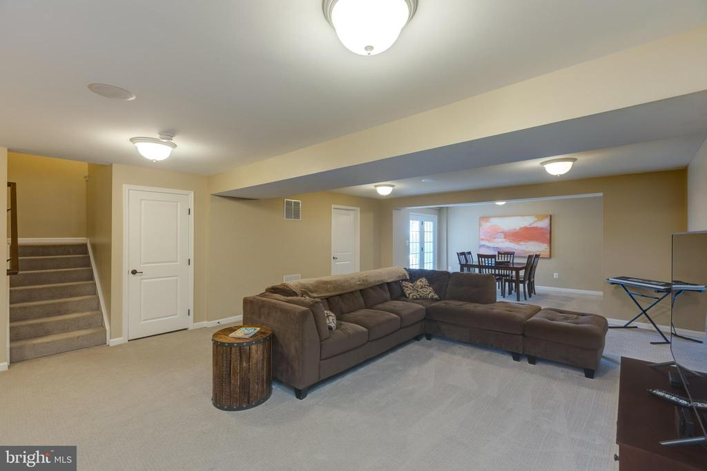 Basement - 25821 RACING SUN DR, ALDIE
