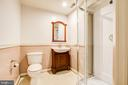 Lower level full bath - 14810 CROSSVALLEY RD, BURTONSVILLE