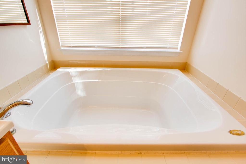 Baath Master Soaking tub - 42612 ANABELL LN, CHANTILLY