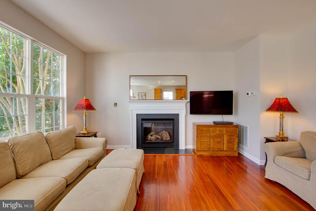 Family Room - 42612 ANABELL LN, CHANTILLY
