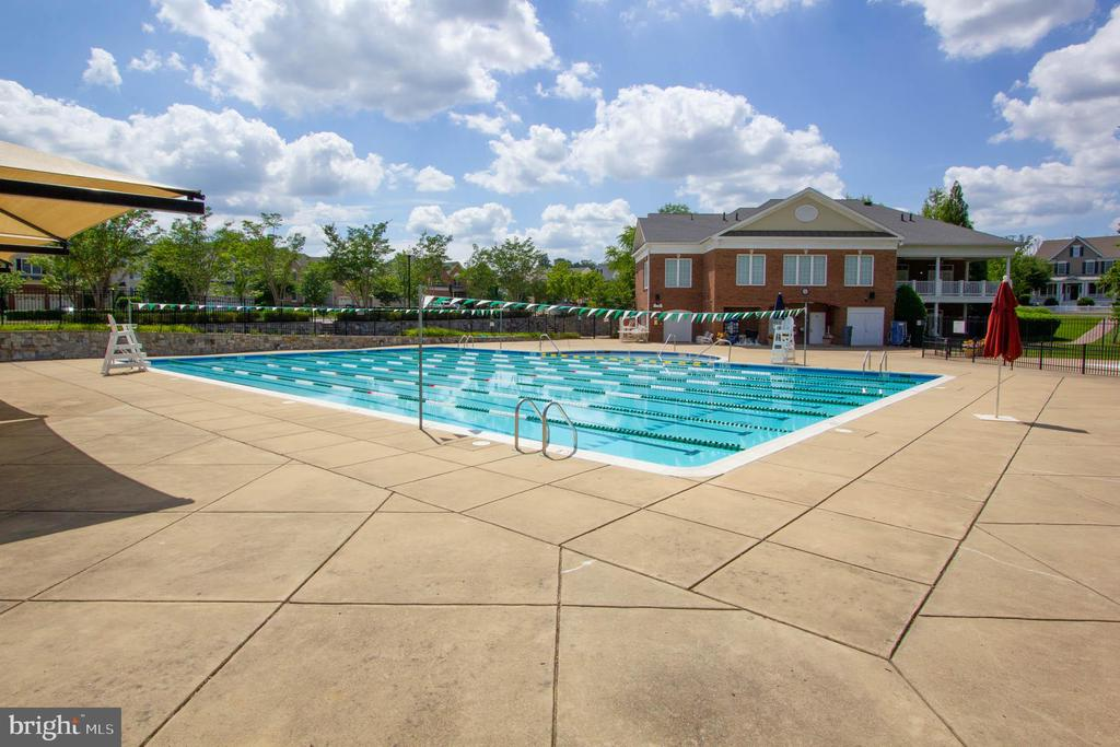 Community Pool - 42612 ANABELL LN, CHANTILLY