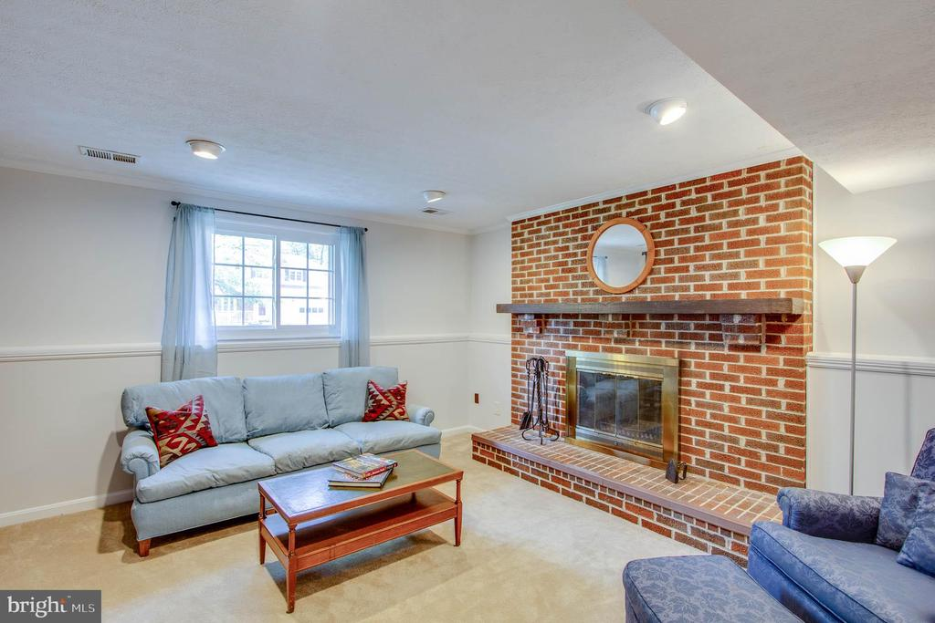 Lower level Family room with fireplace. - 103 APPLEGATE DR, STERLING