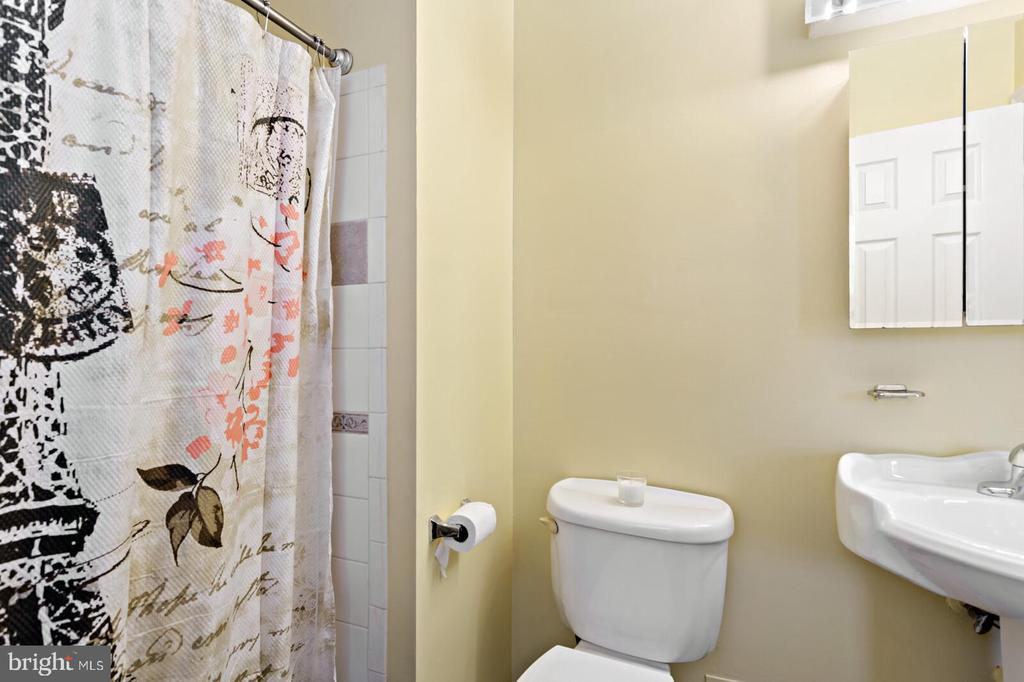 master bath - 1036 TEMPLE CT, STERLING
