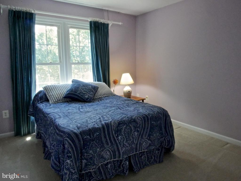 Additional Bedroom #2 - 12003 MEADOWVILLE CT, HERNDON