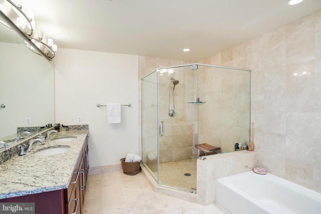 Master Bath - 8220 CRESTWOOD HEIGHTS DR #1814, MCLEAN