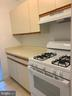 NEW gas stove and hood - 3701 5TH ST S #401, ARLINGTON