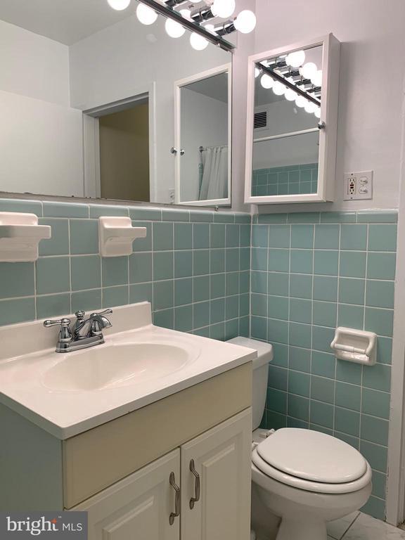 Bathroom - 3701 5TH ST S #401, ARLINGTON
