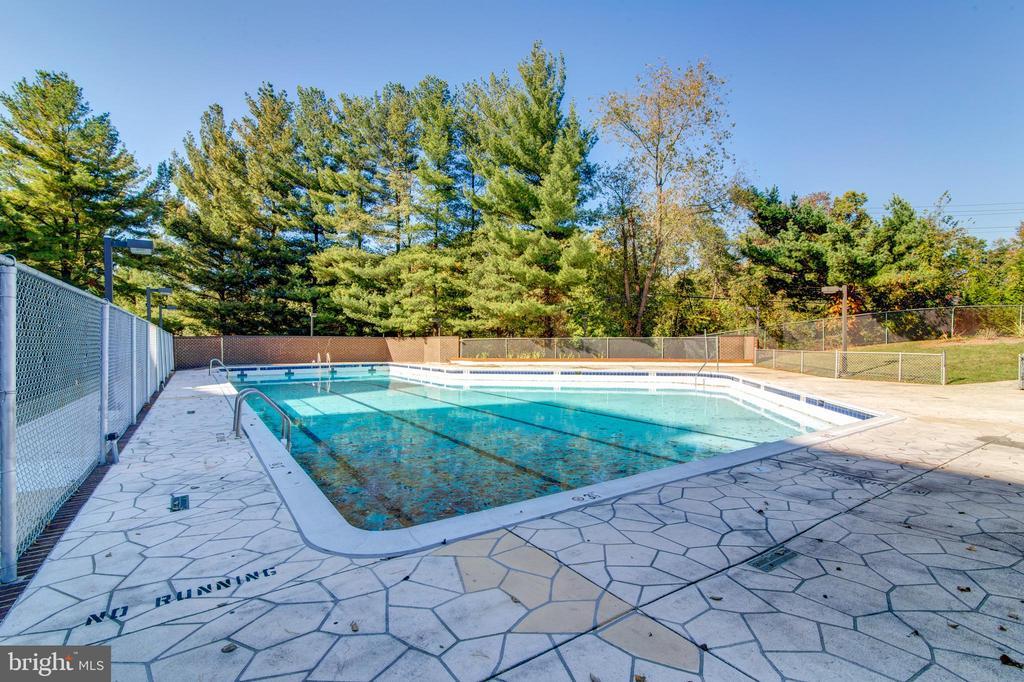 Outdoor Pool - 3800 POWELL LN #705, FALLS CHURCH