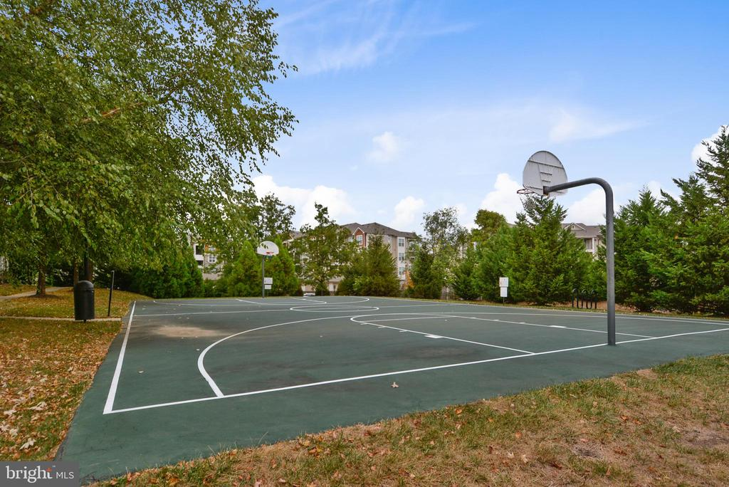 Basketball Court - 21816 PETWORTH CT, ASHBURN