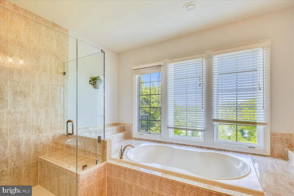 Ensuite bath w frameless shower door, soaking tub - 18356 FAIRWAY OAKS SQ, LEESBURG