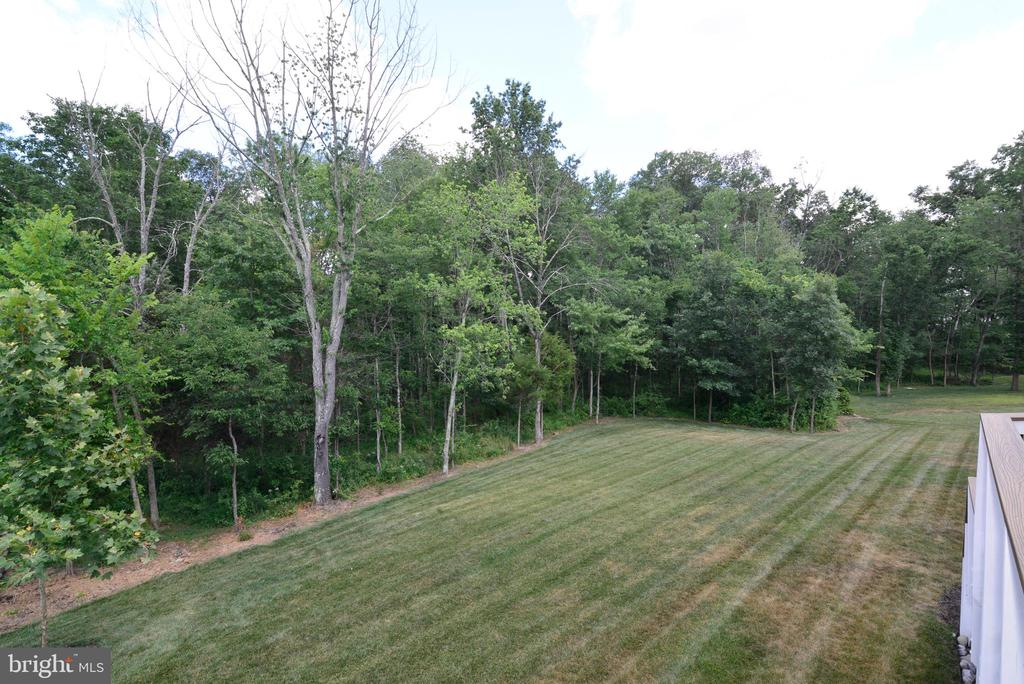 look at the space in your yard - 24890 DAHLIA MANOR PL, ALDIE