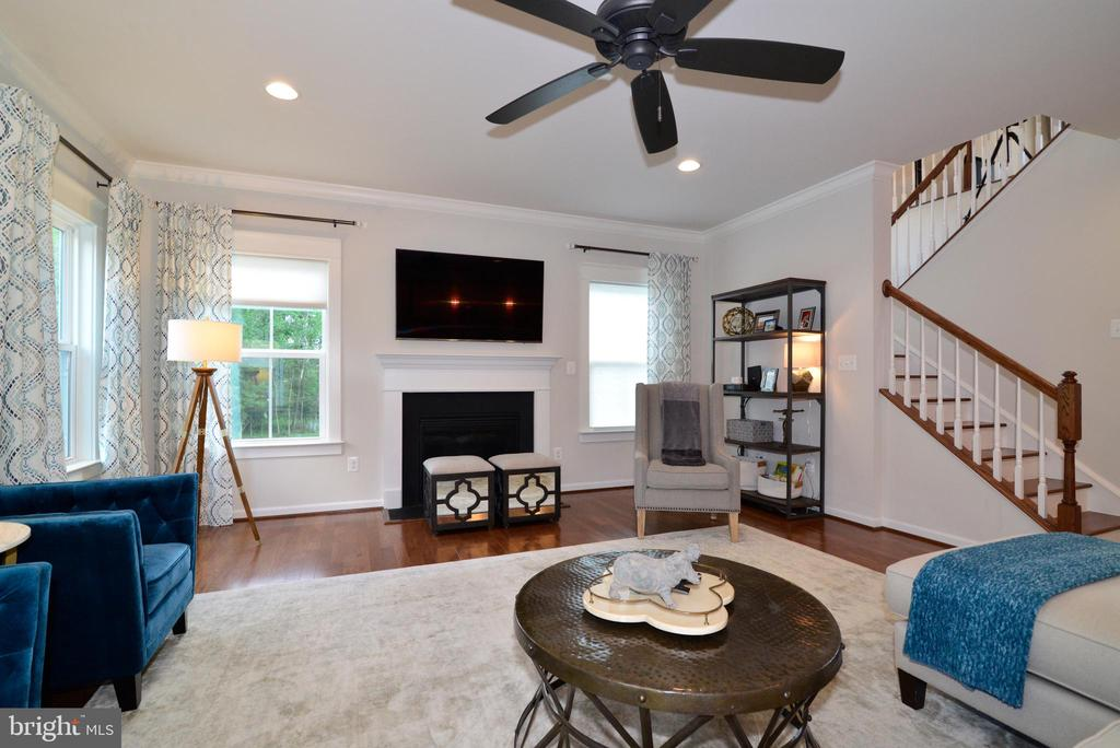 Family Room - 24890 DAHLIA MANOR PL, ALDIE
