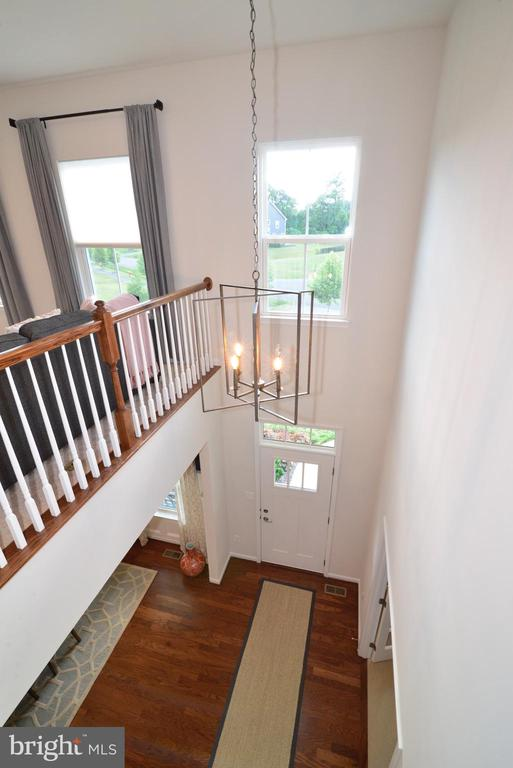 2 Story Foyer - 24890 DAHLIA MANOR PL, ALDIE