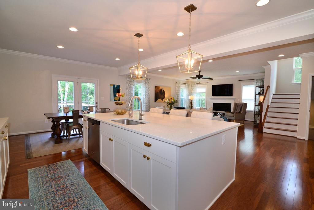 Kitchen flows to Family living - 24890 DAHLIA MANOR PL, ALDIE