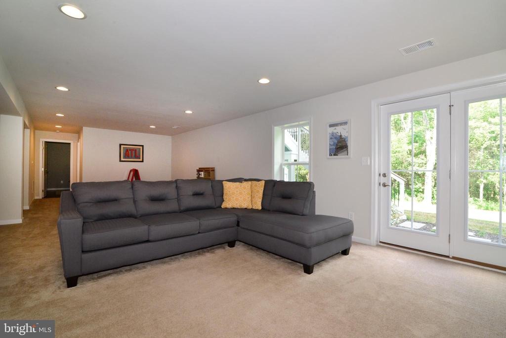 Lower  level rec room - 24890 DAHLIA MANOR PL, ALDIE