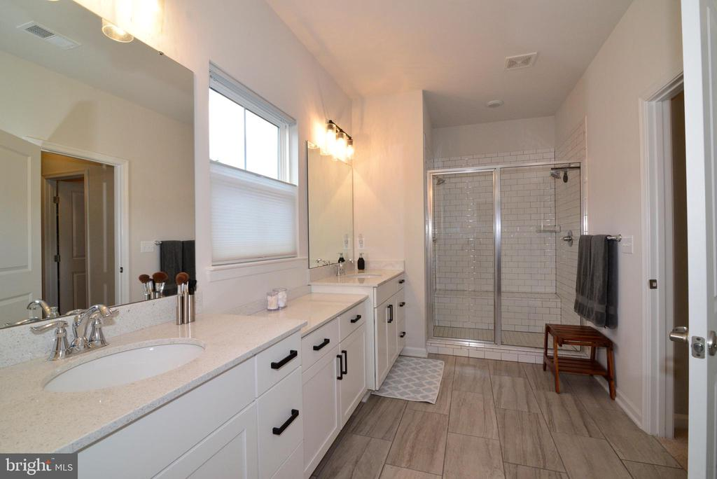 Master bath vanity and shower - 24890 DAHLIA MANOR PL, ALDIE