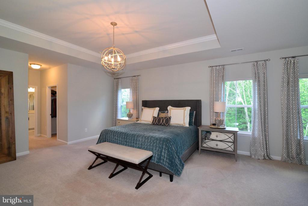Master Bedroom - 24890 DAHLIA MANOR PL, ALDIE