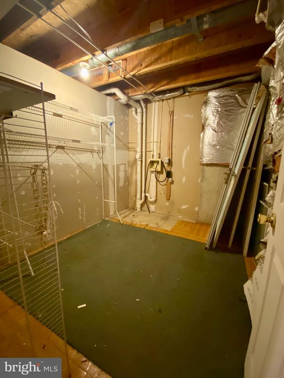 Lower Level Storage Room - 209 ASTON CT, STAFFORD
