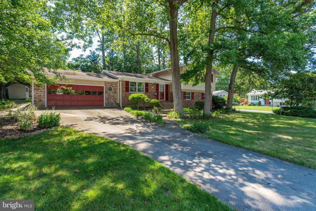 Tons of mature trees! - 6100 THOMAS DR, SPRINGFIELD