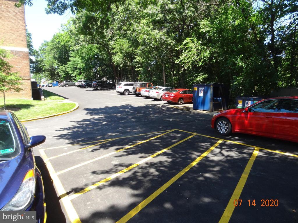 Plenty of Parking. Convenient Trash Service - 2411 ARLINGTON BLVD #201, ARLINGTON