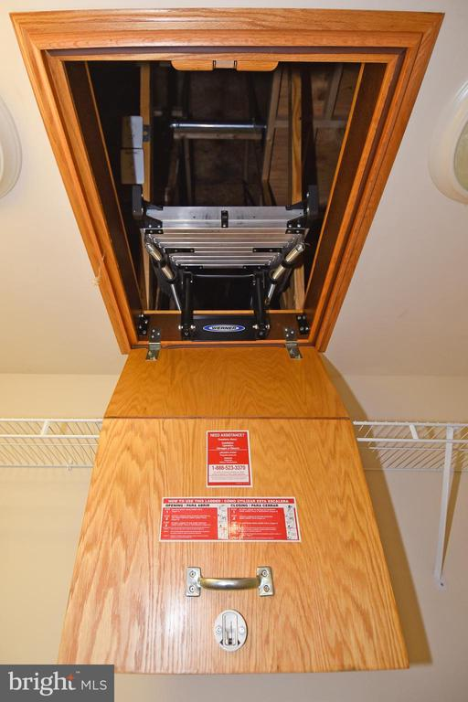 Primary Bedroom Closet Attic Space - 11872 BENTON LAKE RD, BRISTOW