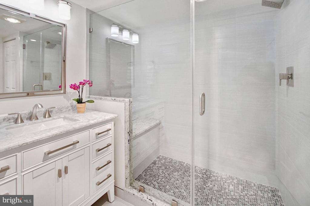 Large master shower - 2100 LEE HWY #241, ARLINGTON