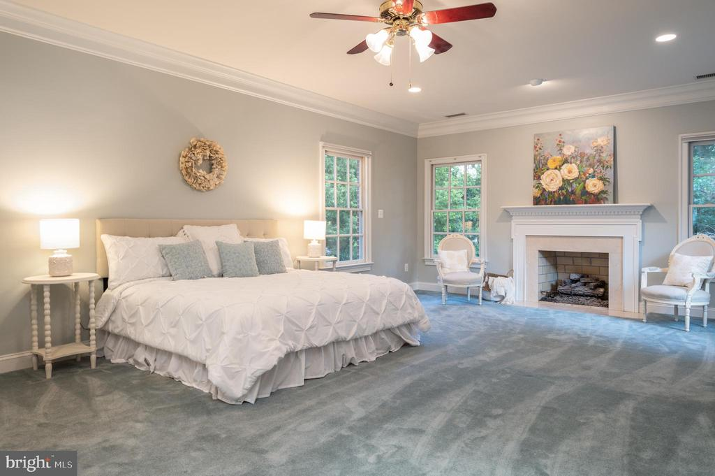 Owners Suite with Fireplace and Ceiling Fan - 3601 SURREY DR, ALEXANDRIA