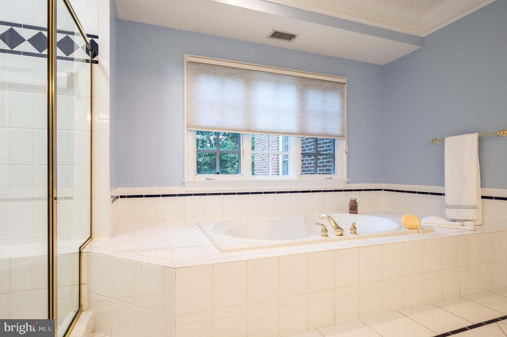 Soaking Tub and Walk-in Shower - 3601 SURREY DR, ALEXANDRIA