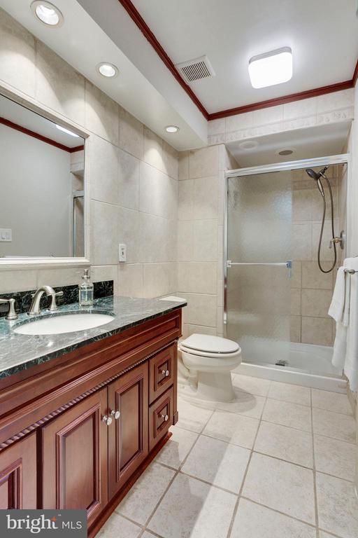 Master Bathroom - 1906 GREAT FALLS ST, MCLEAN