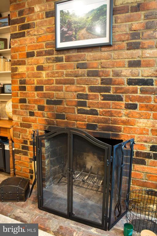Lower Unit Living Room Fireplace - 726 6TH ST NE, WASHINGTON